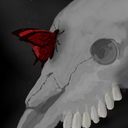 skull drawing byme butterfly red freetoedit