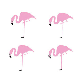 Sketch,out,one,of,those,cute,flamingos!