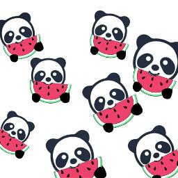 freetoedit dailyremixmechallenge pandaremix panda watermelon