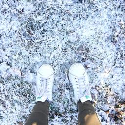 germanwinter ice snow sun colddays