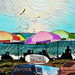 beach party banner biplane van