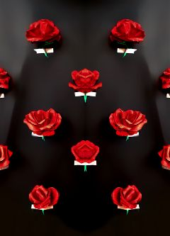 freetoedit madewithpicsart paper roses mirror