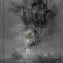 darkart dark differentstyle drawing drawtools blackandwhite doubleexposure colorsplash elephant nature sky ball clouds allpicsart emotions soft artistic surreal abstract myartwork nofreetoedit