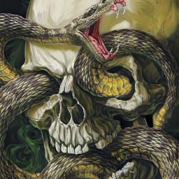 skullhead snakeeyes snakeandbone