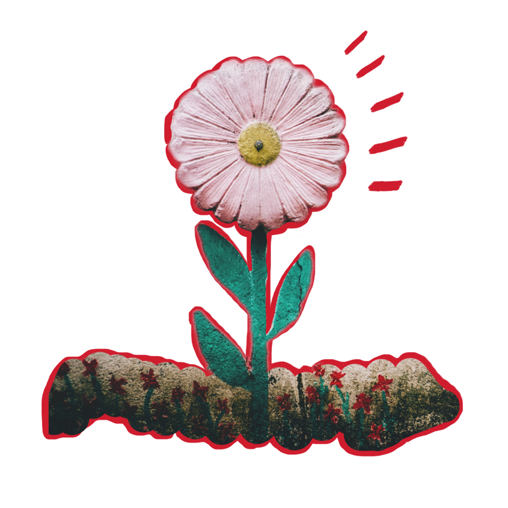 #FreeToEdit #ftestickers #flowers