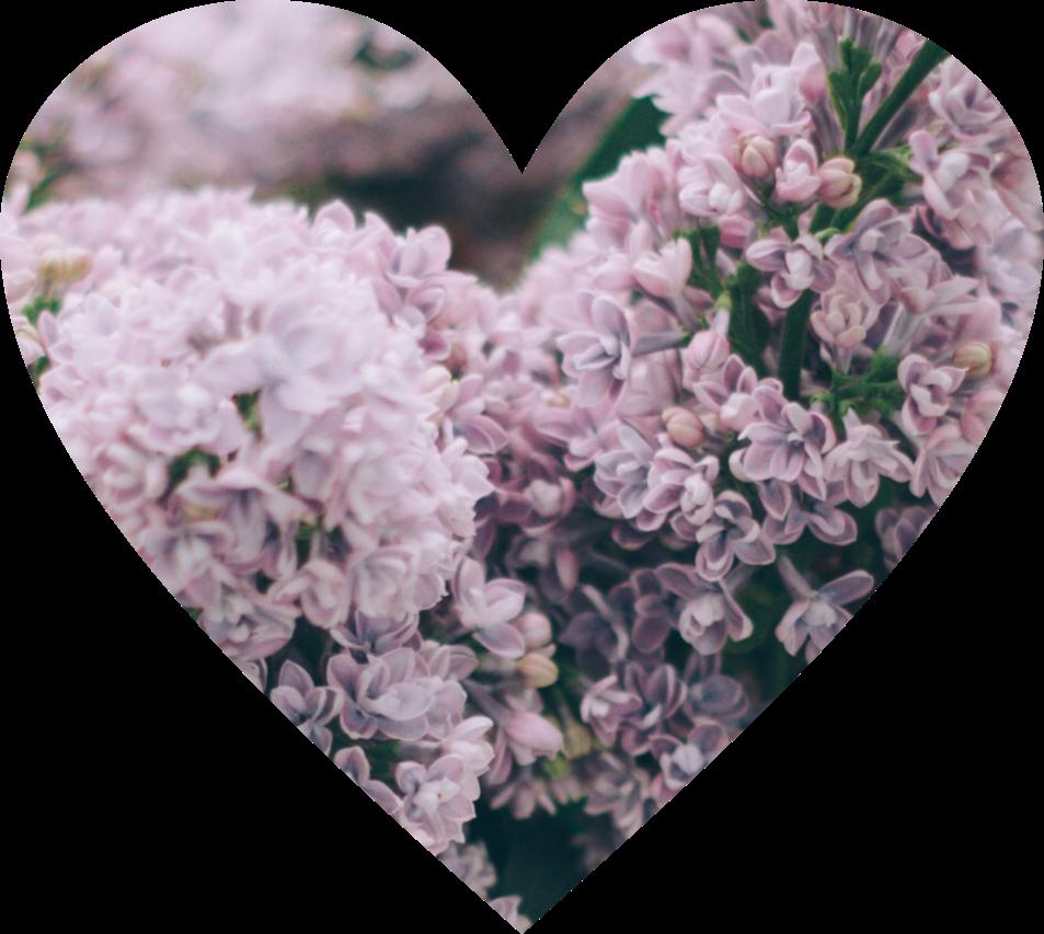 #ftestickers #heart