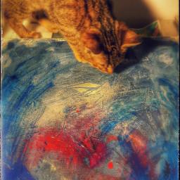 kitty kitten cat painting paint freetoedit