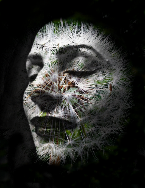 edited doubleexposure woman misterious emotions freetoedit
