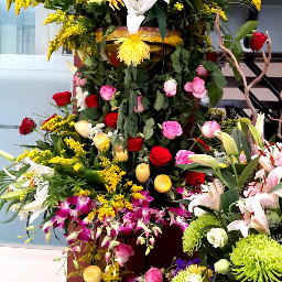 flowers beautiful flowerbouquet colourful freetoedit