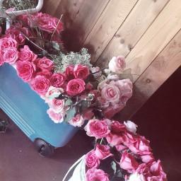 flowers retrofilter flowerbouquet freetoedit